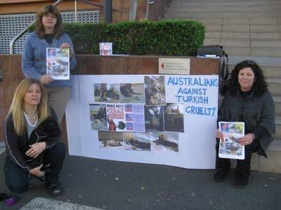 aust Η Τουρκία της Ντροπής   Σοκαριστικές φωτογραφίες απο εγκλήματα κατά αδέσποτων σκύλων!!