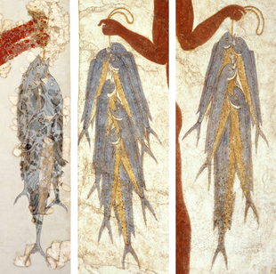 psaria toix 310x Το προϊστορικό σουβλάκι της Σαντορίνης