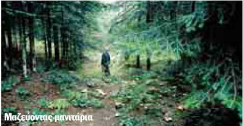 blaxoxoria5 Μακεδονία   Βλαχοχώρια Γρεβενών