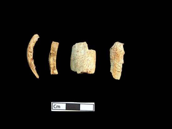 12 ΥΠΠΟΑ: Μελέτη Σκελετικών Καταλοίπων Ταφικού Μνημείου, Λόφου Καστά