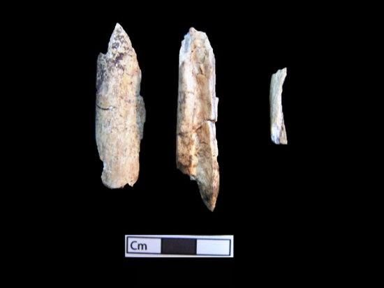 13 ΥΠΠΟΑ: Μελέτη Σκελετικών Καταλοίπων Ταφικού Μνημείου, Λόφου Καστά