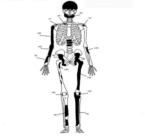 1  ΥΠΠΟΑ: Μελέτη Σκελετικών Καταλοίπων Ταφικού Μνημείου, Λόφου Καστά