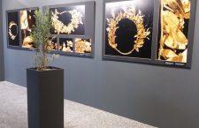 Κιλκίς: Στο φως χρυσό στεφάνι ελιάς από την αρχαία Ευρωπό